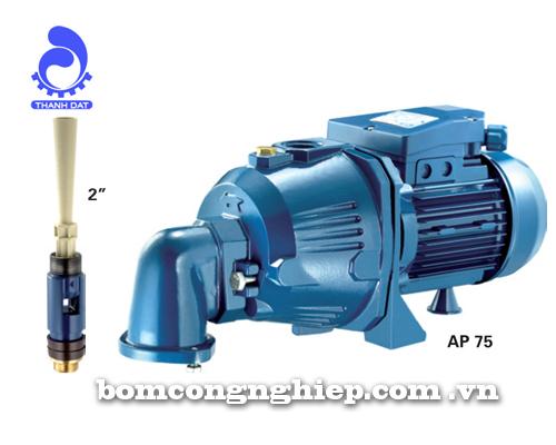 Máy bơm nước Pentax AP 75