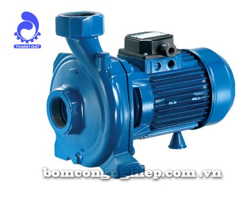 Máy bơm nước Pentax CH 150 300
