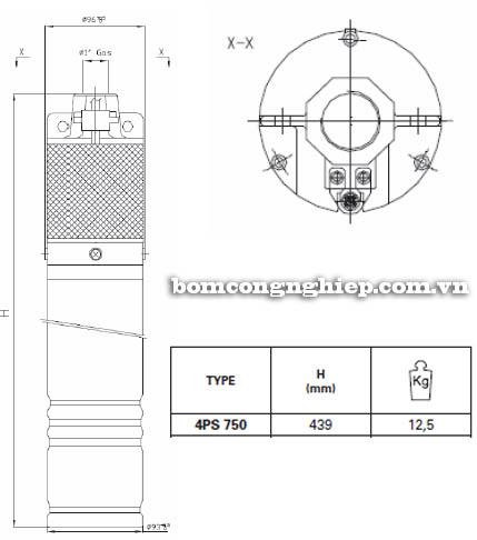 Máy bơm hỏa tiễn Pentax 4SP 750 bảng thông số kích thước