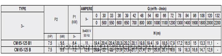 Máy bơm Pentax CM 65-125B bảng thông số kỹ thuật