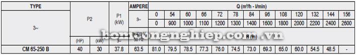 Máy bơm Pentax CM 65-250B bảng thông số kỹ thuật
