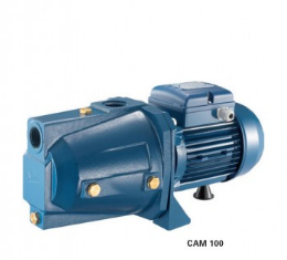may-bom-pentax-cam-100