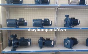 Nhà phân phối máy bơm Pentax Italy chính hãng Thành Đạt